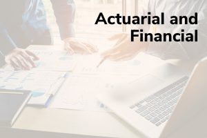 Actuarial and Financial Title Frame
