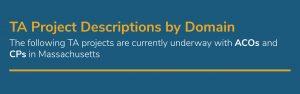 MA DSRIP TA Marketplace Masthead - Project Descriptions by Domain