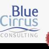 Blue Cirrus Consulting - New! TA Vendor